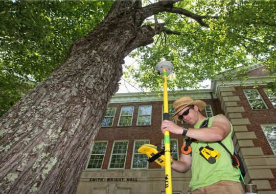 Arborist Consultations-West Miami FL Tree Trimming and Stump Grinding Services-We Offer Tree Trimming Services, Tree Removal, Tree Pruning, Tree Cutting, Residential and Commercial Tree Trimming Services, Storm Damage, Emergency Tree Removal, Land Clearing, Tree Companies, Tree Care Service, Stump Grinding, and we're the Best Tree Trimming Company Near You Guaranteed!