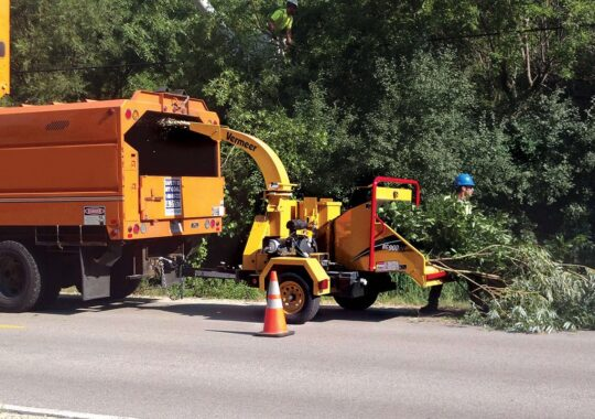 Commercial Tree Services-West Miami FL Tree Trimming and Stump Grinding Services-We Offer Tree Trimming Services, Tree Removal, Tree Pruning, Tree Cutting, Residential and Commercial Tree Trimming Services, Storm Damage, Emergency Tree Removal, Land Clearing, Tree Companies, Tree Care Service, Stump Grinding, and we're the Best Tree Trimming Company Near You Guaranteed!