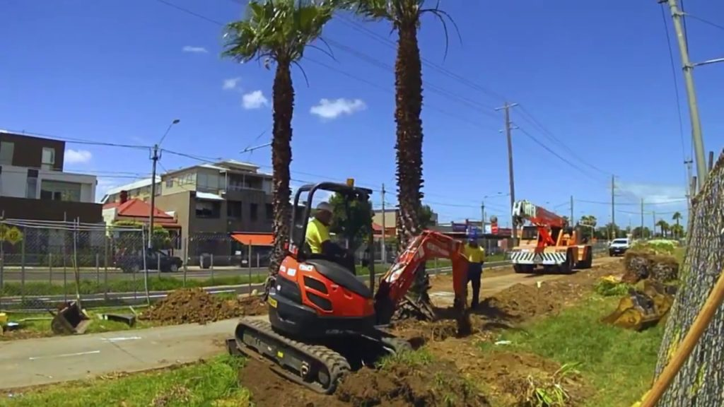 Palm Tree Removal-West Miami FL Tree Trimming and Stump Grinding Services-We Offer Tree Trimming Services, Tree Removal, Tree Pruning, Tree Cutting, Residential and Commercial Tree Trimming Services, Storm Damage, Emergency Tree Removal, Land Clearing, Tree Companies, Tree Care Service, Stump Grinding, and we're the Best Tree Trimming Company Near You Guaranteed!