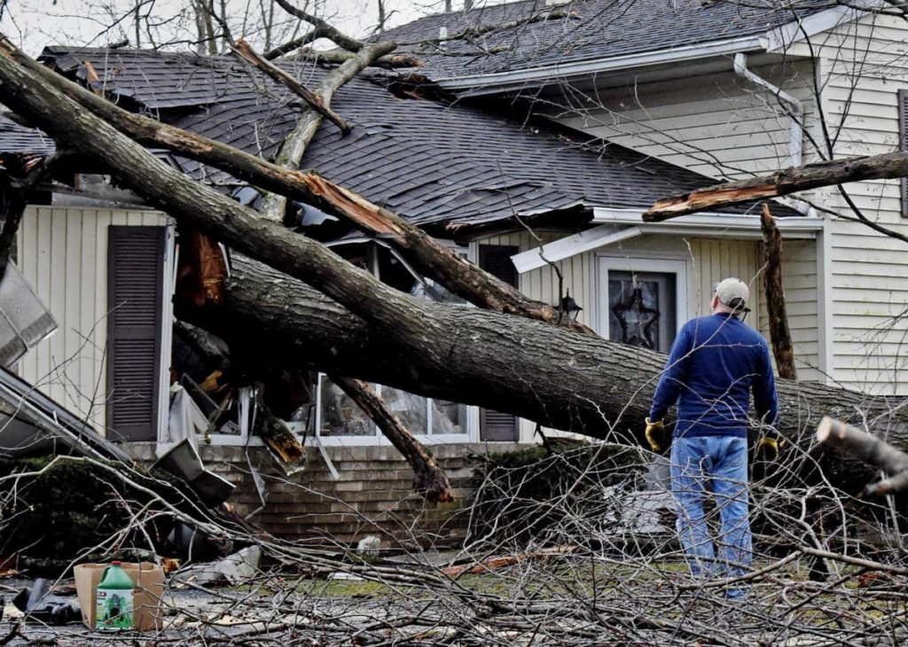 Storm Damage-West Miami FL Tree Trimming and Stump Grinding Services-We Offer Tree Trimming Services, Tree Removal, Tree Pruning, Tree Cutting, Residential and Commercial Tree Trimming Services, Storm Damage, Emergency Tree Removal, Land Clearing, Tree Companies, Tree Care Service, Stump Grinding, and we're the Best Tree Trimming Company Near You Guaranteed!