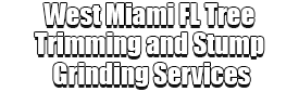 West Miami FL Tree Trimming and Stump Grinding Services Logo-We Offer Tree Trimming Services, Tree Removal, Tree Pruning, Tree Cutting, Residential and Commercial Tree Trimming Services, Storm Damage, Emergency Tree Removal, Land Clearing, Tree Companies, Tree Care Service, Stump Grinding, and we're the Best Tree Trimming Company Near You Guaranteed!